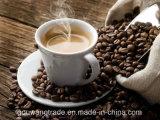 حصلت يتأهّل [سليمّينغ&ويغت] خسارة قهوة لأنّ حافظت نوبة