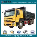Rad-Lastkraftwagen mit Kippvorrichtung des HOWO Kipper-6X4 Sinotruk 10