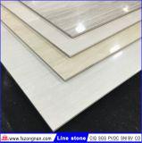 ライン石の磨かれた磁器の床タイル(VPB6905 600X600mm)