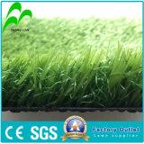 Tapis de sport de l'herbe artificielle pour le soccer