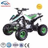 도로 ATV 떨어져 아이 50cc 소형 ATV를 위한 110cc ATV 쿼드