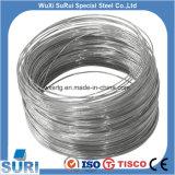 Indicador 18 20 22 24 26 28 30 32 34 36 38 Alambre de acero inoxidable SS 316L Cable Precio en China
