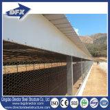 고품질 완전히 자동적인 Prefabricated 가벼운 강철 구조물 가금 농장 및 가금 집