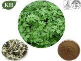 Il fornitore fornisce l'estratto naturale Eupatilin 0.25% di 100% Argyi