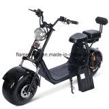 elektrischer Roller 1500W mit 2 Sets 60V/20ah