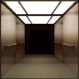 Miroir de mur d'arrière d'acier inoxydable de délié repérant l'ascenseur résidentiel bon marché de levage à vendre