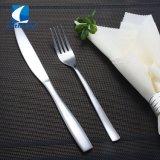 Eco-Friendly 18/0 talheres de aço inoxidável para restaurante, Alça longa talheres definido