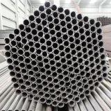 Pijp van het Roestvrij staal van China de In het groot