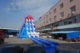 50 m-langer neuer Entwurfs-riesiges aufblasbares Wasser-Plättchen