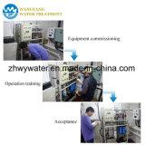 RO de Apparatuur 100lph Desalinator van de Ontzilting van de machine