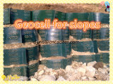 De Bescherming Geocell van de helling/Ultrasoon Lassen Geocell