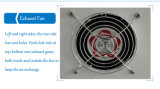 Incubateur d'oeufs de poulet équipé de volaille Thermostat de trappe d'incubation