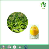 Мощный Анти--Oxidiant органический водорастворимый кофермент Q10 98%