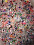고해상 사진기 플라스틱은 색깔 분류하는 사람 기계를 재생한다