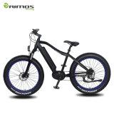 Bafang MID Drive Motor Electric Fat Tire Snow E Bike