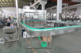 Automatischer RO-Trinkwasser-Behandlung-Systems-abgefüllter packender Produktionszweig