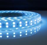 색깔 변경 RGB 60LED 120LED 고전압 LED 지구