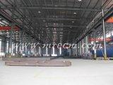 Estructura de acero del bajo costo del taller del ahorro de costes