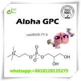 Nootropic Ergänzungs-Puder Alpha-GPC zu Zunahme-Speicher 28319-77-9