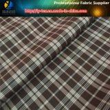 Tessuto dell'assegno del poliestere in azione! Tessile variopinta dell'assegno per l'indumento (X018-20)