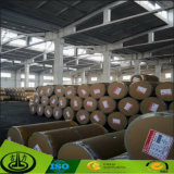 Madera de papel de fibra de papel decorativo como OEM