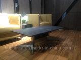 Tabella di tè della mobilia dello scrittorio con il piedino dell'acciaio inossidabile (CT-V5)
