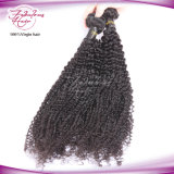 8A Grade Kinky Curly Brazilian Human Virgin Hair Wig
