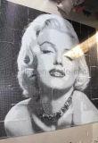 Künstlerisches Mosaik, Mosaik-Wandkunst-Mosaik-Abbildung (HMP722)
