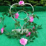 Outdoor& Innendekoration-Inner-Form-hängende Pflanzer-Standplatz-Blumen-Potenziometer