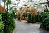 Piante di alta qualità e fiori artificiali del giardino verticale Gu410101049493038