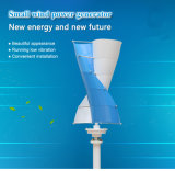 AC 24V 200W Spiral Small Vertical Axis Wind Turbine (SHJ-NEV200S)