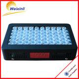 Lo mejor de Ebay vender 300w Crecimiento LED de luz para la floración fructificación