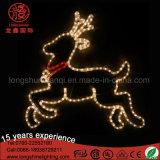 거리를 위한 옥외 LED 제 2 순록 주제 크리스마스 훈장 빛