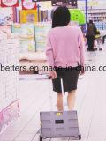 Doppelte Farben-Plastikeinkaufen-Laufkatze-Karre