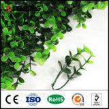 De alta calidad de la hoja verde artificial Valla boj Coberturas