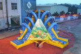 Erstaunlicher Dschungel-Bären-aufblasbares vier Richtungs-Plättchen für Kinder (CHSL455-1)