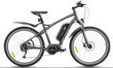 Gebirgstyp elektrisches Fahrrad (TDB14Z)