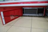 De hete Ijskasten van de Vertoning van de Showcase van de Supermarkt van de Verkoop Standaard Koude