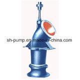 Zl schreibt städtische Wasserversorgung-Pumpe