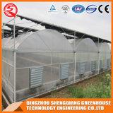 Heißes galvanisiertes Stahlrahmen-Plastikgewächshaus
