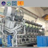 centrale de gazéification de biomasse d'énergie électrique de 1MW 2MW
