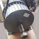 Генератор постоянного магнита AC 380V 30kw с основанием установил