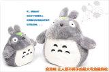 Farcies en peluche Totoro Poupée (DYMR05)