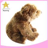 Hot Sale Teddy Bear Rose Bear Teddy Flower Bear Toy Kan uw eigen logo afdrukken