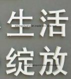 colore di bianco della scheda della gomma piuma del PVC di spessore di 1-20mm
