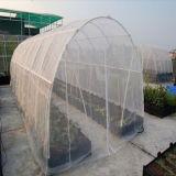 온실을%s 100%HDPE 80g 100g 50 메시 곤충 그물