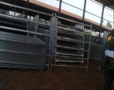 Оцинкованные стальные трубы 6 голов крупного рогатого скота Corral панели