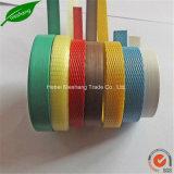 De kleurrijke Plastic Band van de Riem pp van de Riem pp van de Verpakking pp