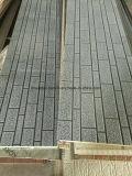 Доска стены термоизоляции для виллы туалета стены стальной структуры передвижной