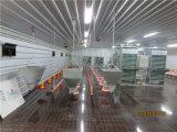 Chambre de poulet préfabriquée de structure métallique (KXD-CH1502)